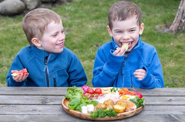 barn på picknick
