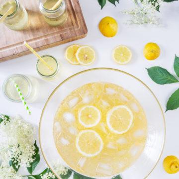 citronvirvel, bål
