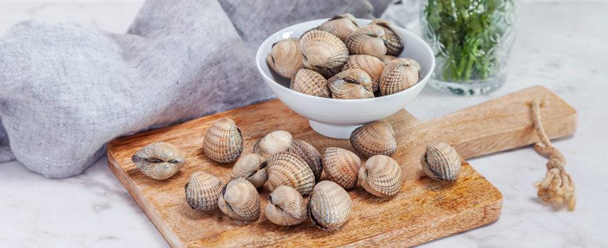 hjärtmusslor musslor