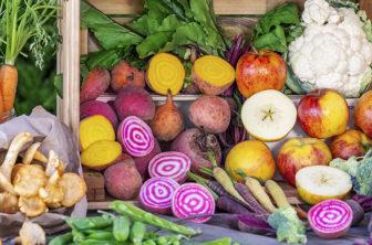 höstskörd, skördetid, rotsaker, grönsaker