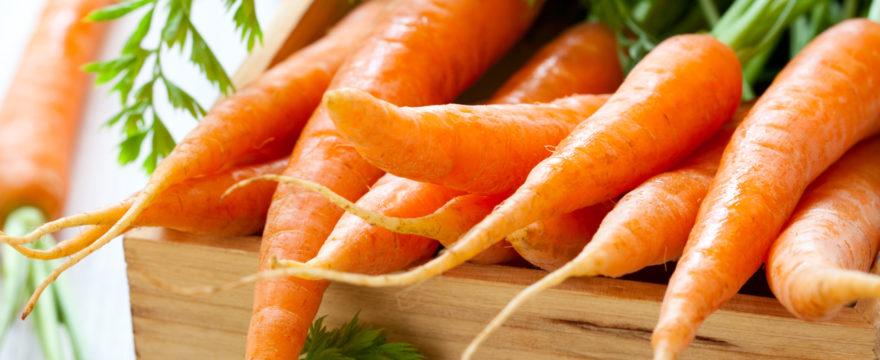 morötter, morot