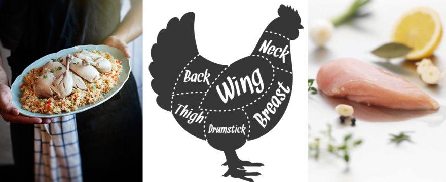 kycklingskola