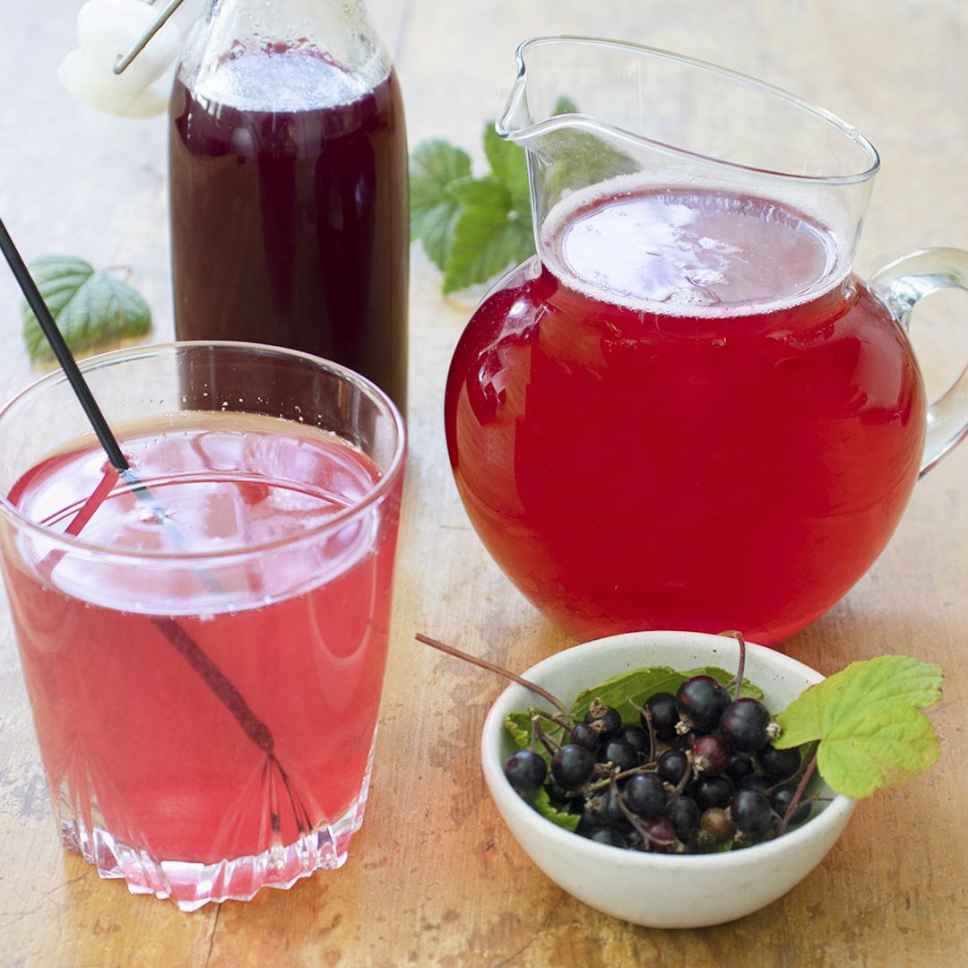 Svartvinbärssaft saft med svarta vinbär